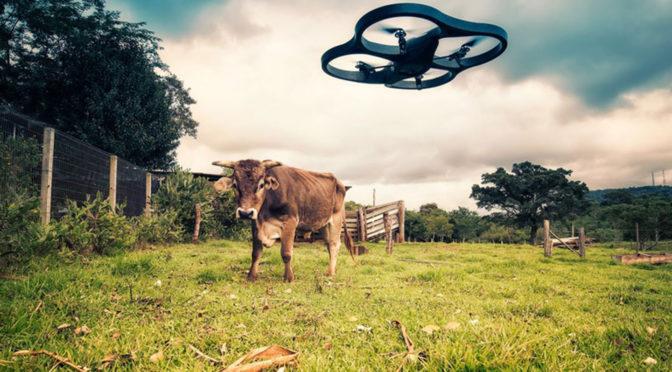 Agtechs: tecnologias para agricultura inspiram novos mercados