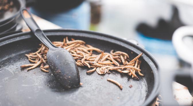 O promissor mercado de insetos comestíveis