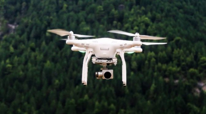 Robôs na floresta: avanços na tecnologia contribuem para preservação ambiental no Brasil