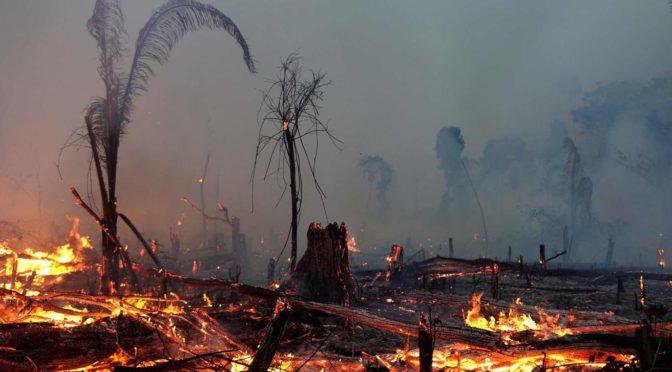 Clique aqui para ler todo o conteúdo do dossiê Crise Climática