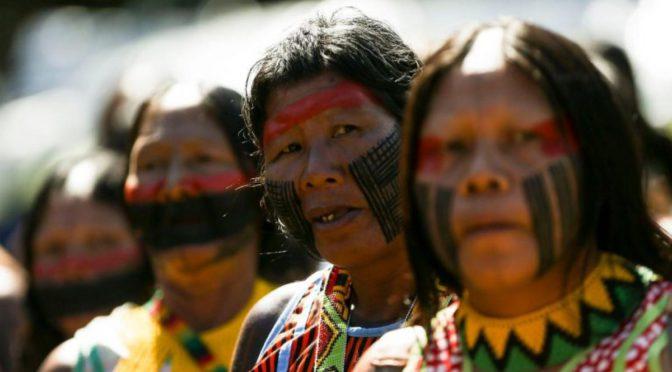Assegurar o direito à terra é essencial para proteger a rica diversidade cultural e biológica dentro das Terras Indígenas