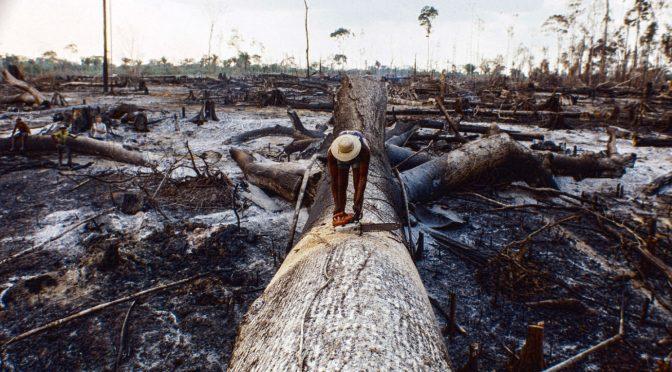 Os desafios para um modelo realmente sustentável e inovador de desenvolvimento da Amazônia