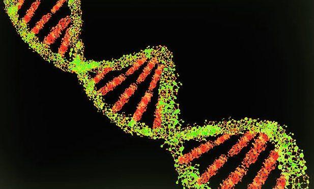 DNA dos brasileiros carrega marcas da colonização