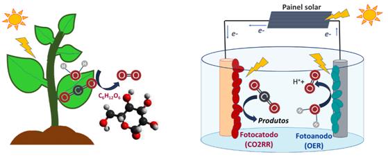 Trabalhando por um processo viável e sustentável para conversão de CO2 em produtos químicos