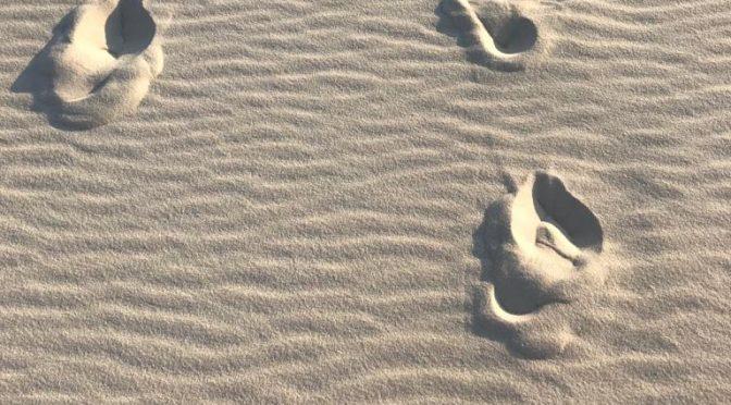 O que um punhado de areia pode contar sobre o passado e o futuro?