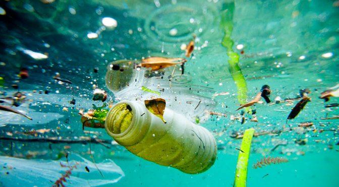 Temos o dia e a década do oceano; será que precisaremos de um século para salvá-lo?